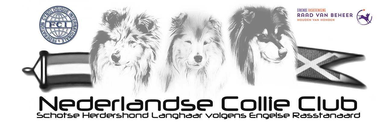 Nederlandse Collie Club